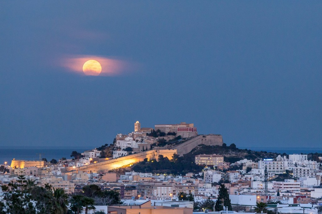 Ibiza at Night with Old Town Visit - Living Tours