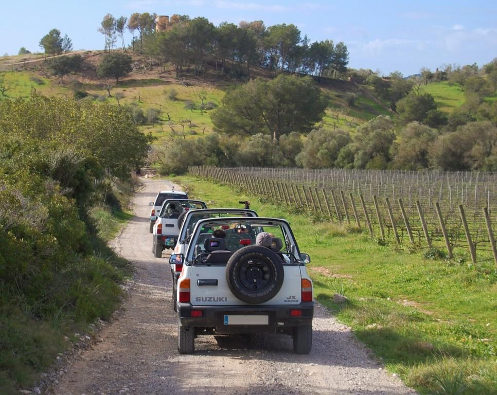 Passeio de Jeep - Living Tours