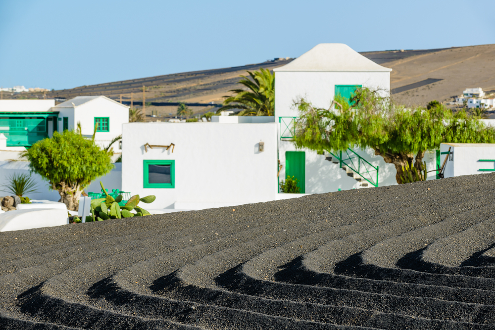 César Manrique Foundation, Lanzarote - Living Tours