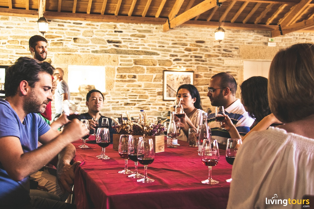 Douro Valley Wine Tasting - Living Tours