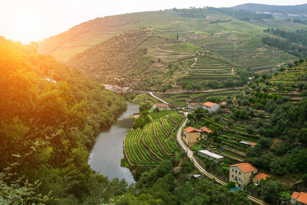 Douro Valley - Living Tours