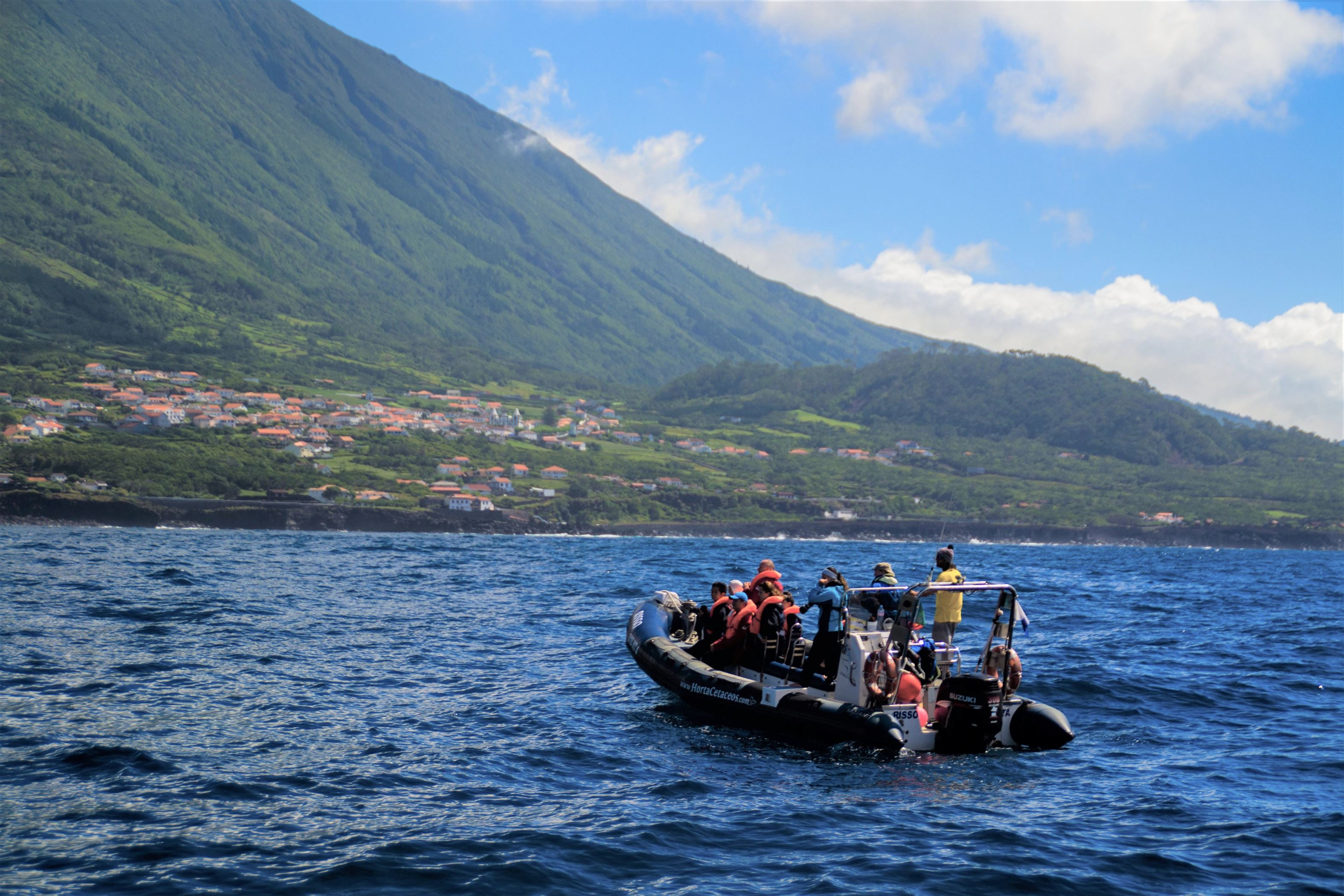 Azores Boat Trip