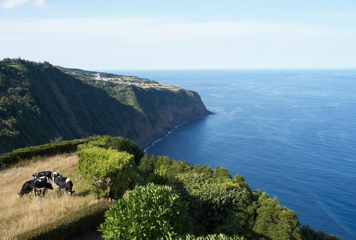 Ilha de São Miguel Açores Nordeste