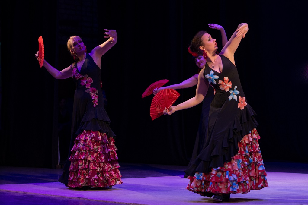 Flamenco Show at night in Barcelona