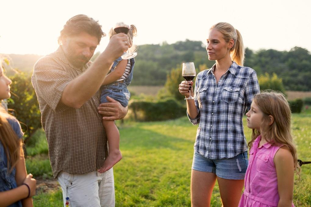 Wine Tour in Penedès