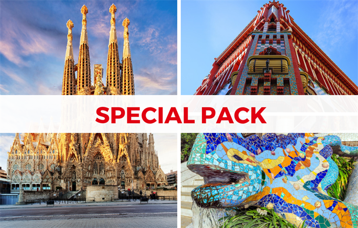 Tickets Sagrada Familia, Casa Vicens and Park Guell - Living Tours