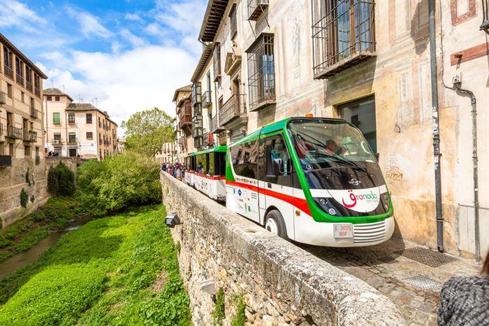 Granada City Tour - Living Tours