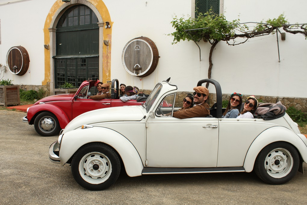 Beetle Tour with Wine