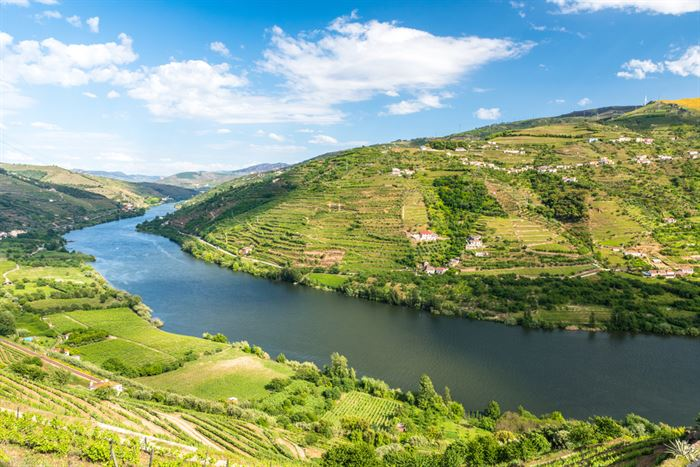 Douro Cruise from Porto to Régua with Hotel - Living Tours
