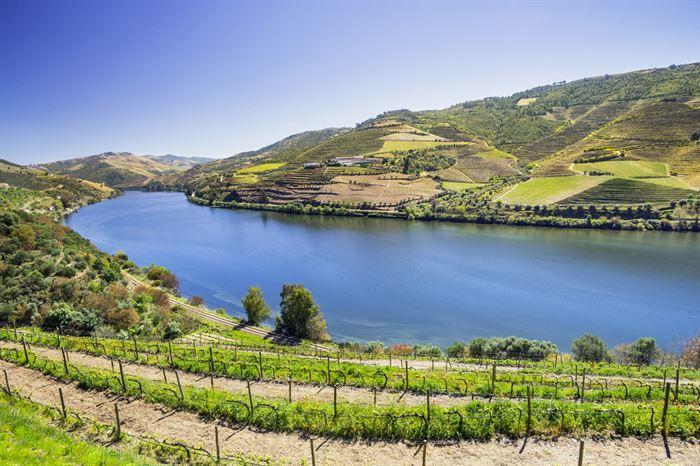 Douro Valley full dau tour - Living Tours