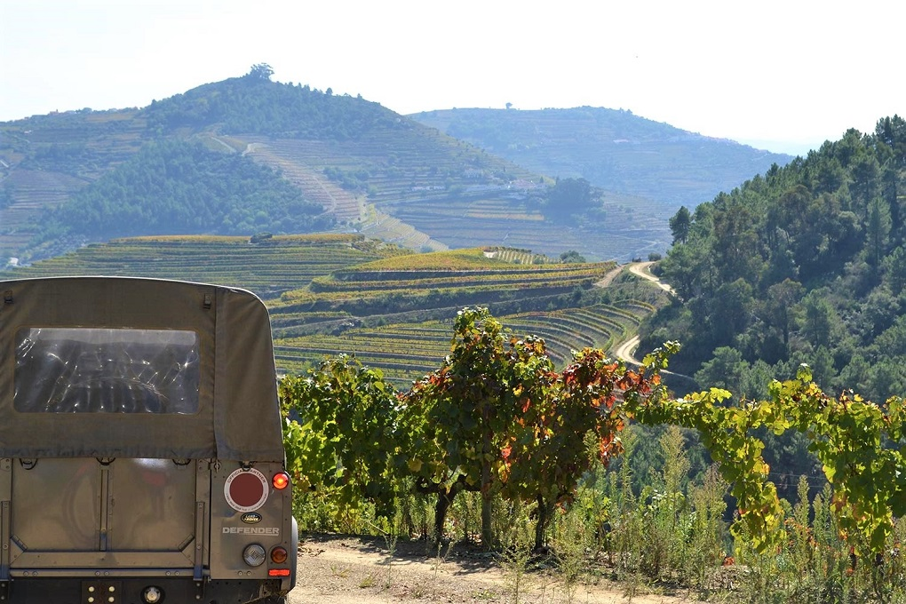 Jeep Tour Douro Valley - Living Tours