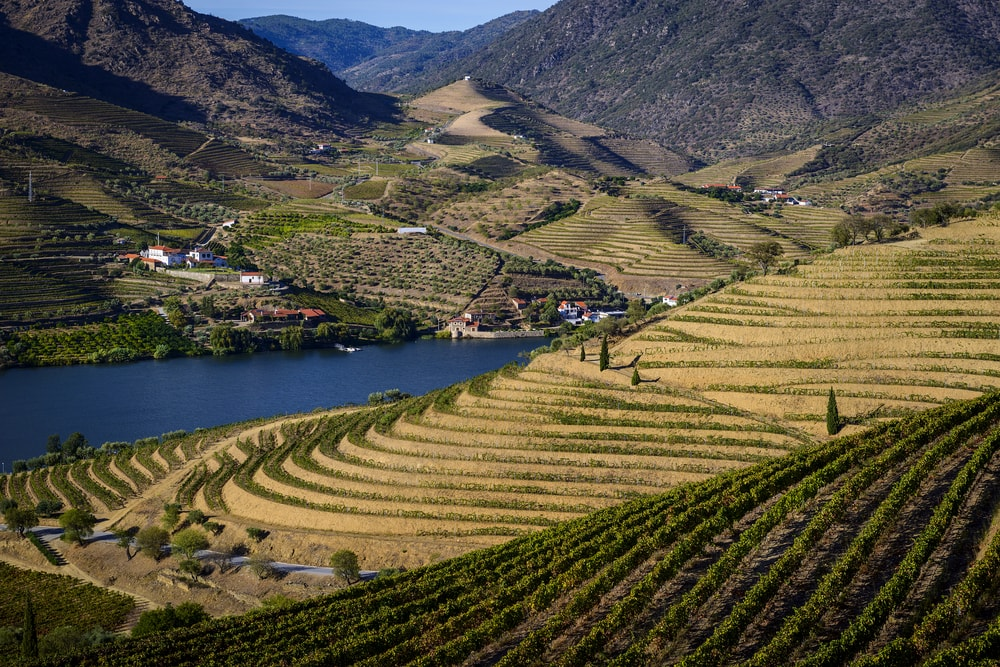 Douro Valley Cruise - Living Tours