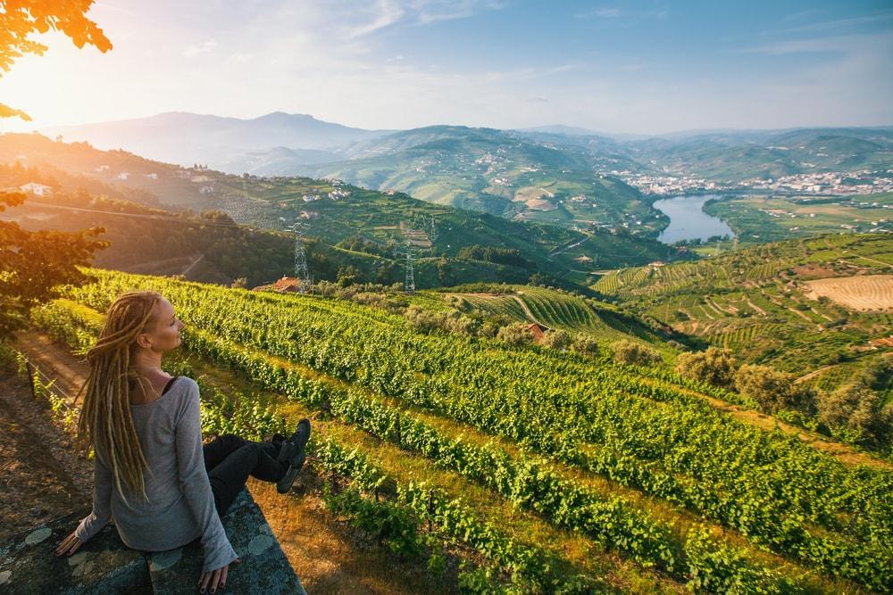 Douro Valley harvest festival - Living Tours